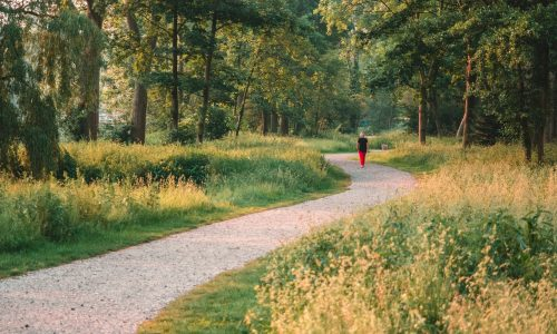 Get Moving – 5 Reasons to Walk More